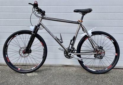 handsome dog titanium mountain bike